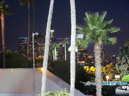 View of downtown LA from the Top Deck.jpg
